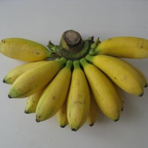 Mini Bananas