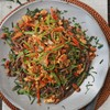 Soy-Garlic Tempeh, Snow Peas, Carrots and Soba Noodles with Peanuts and Cilantro