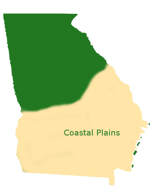 Coastal Plains of Georgia