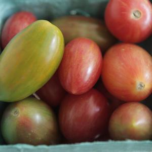 Cherry Heirloom Tomatoes