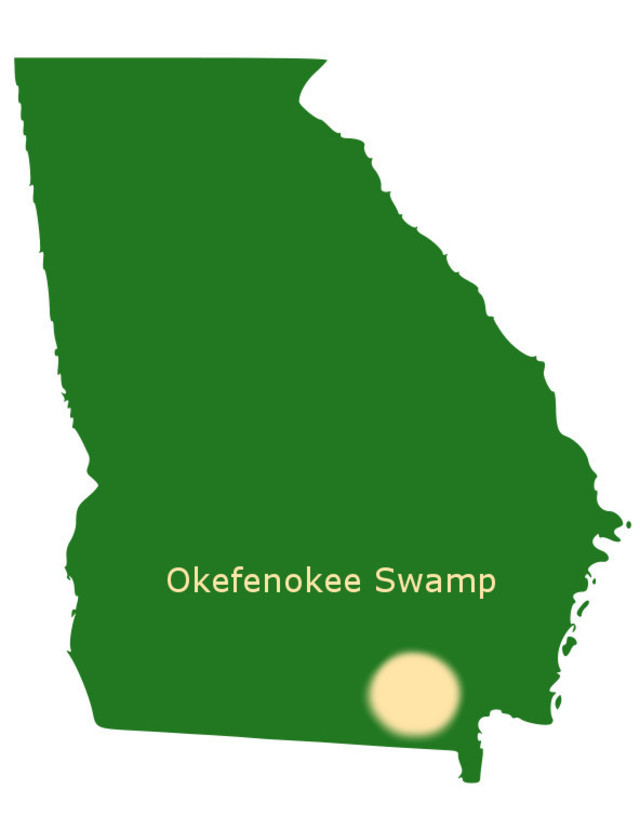 Okefenokee Swamp of Georgia