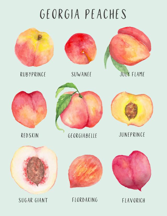 peach davis postcard