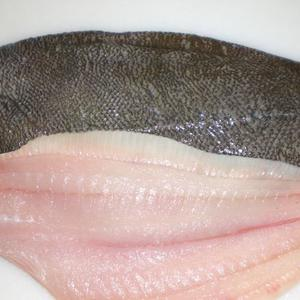 Flounder Filets