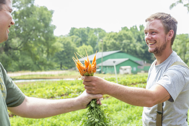 a farmer handing fresh harvested carrots to man