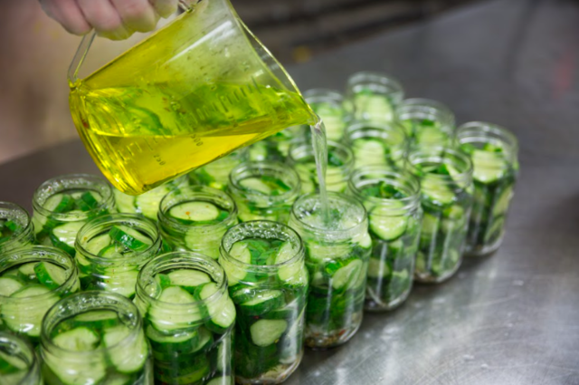 making pickles by pouring vinegar into empty jars with sliced cucumbers and herbs in them