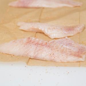 Wild-Caught Acadian Redfish